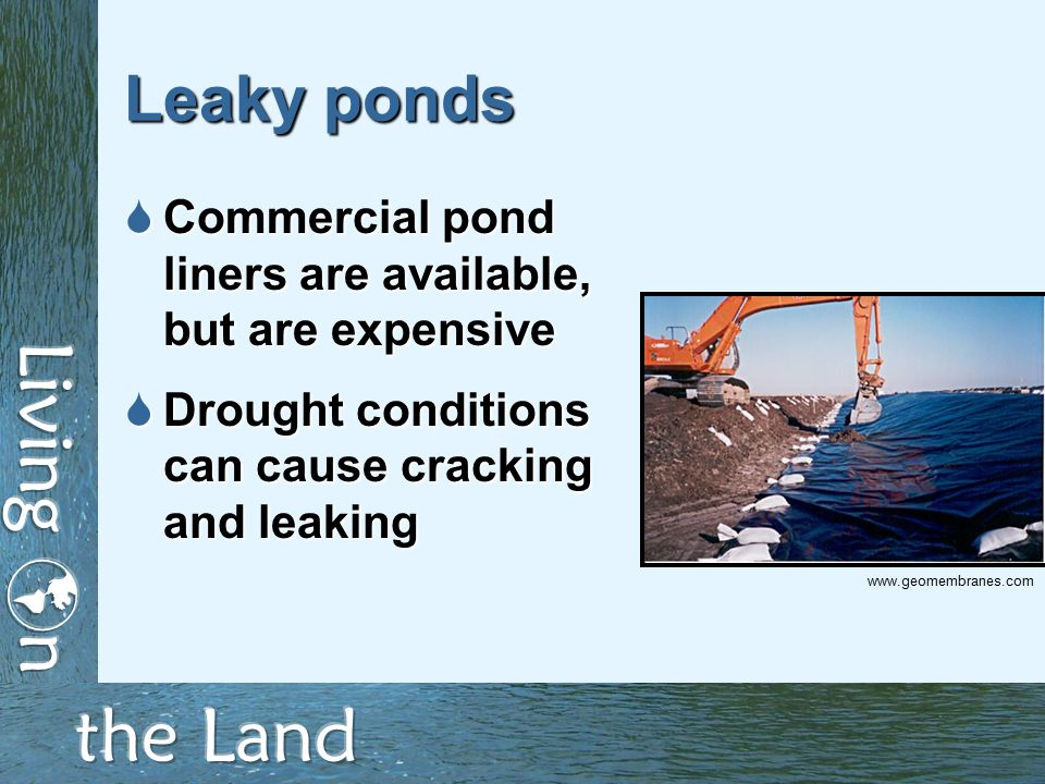 Leaky ponds  Commercial pond liners are available, but are expensive  Drought conditions can cause cracking and leaking www.geomembranes.com