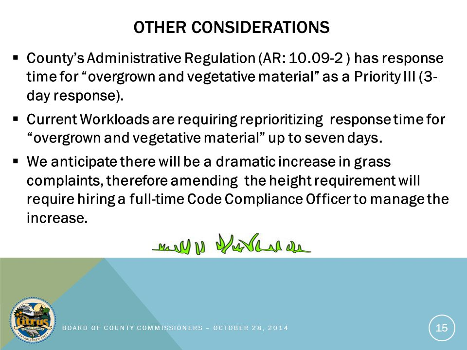OTHER CONSIDERATIONS  County's Administrative Regulation (AR: 10.09-2 ) has response time for overgrown and vegetative material as a Priority III (3- day response).