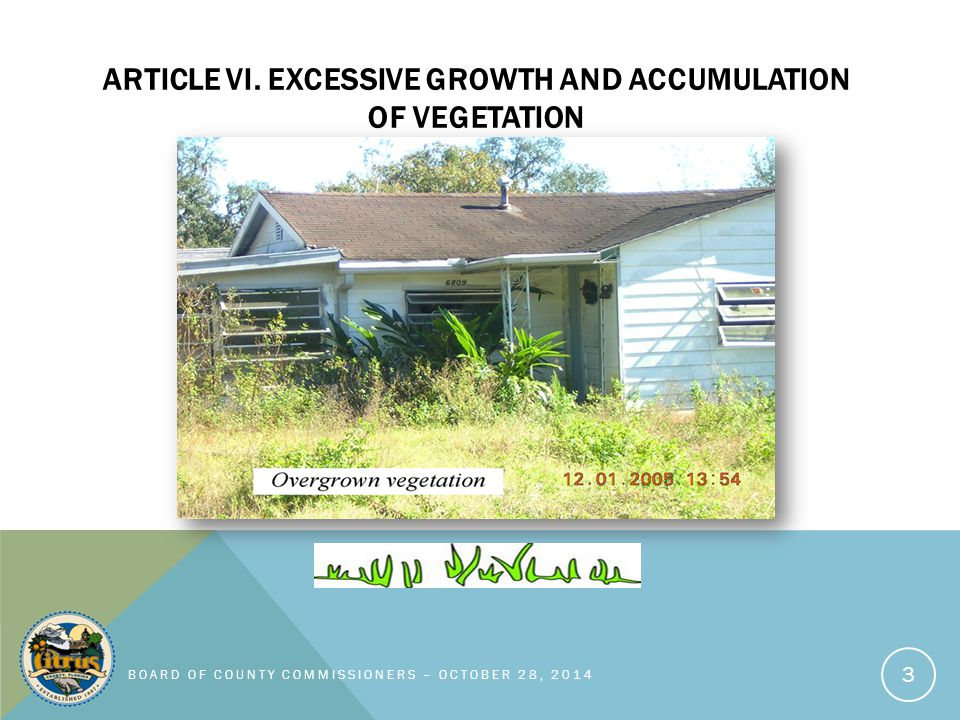 ARTICLE VI.EXCESSIVE GROWTH AND ACCUMULATION OF VEGETATION Sec.