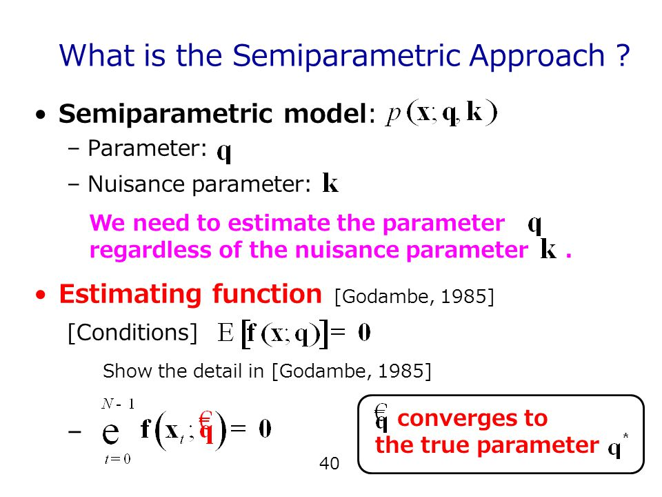 40 What is the Semiparametric Approach .