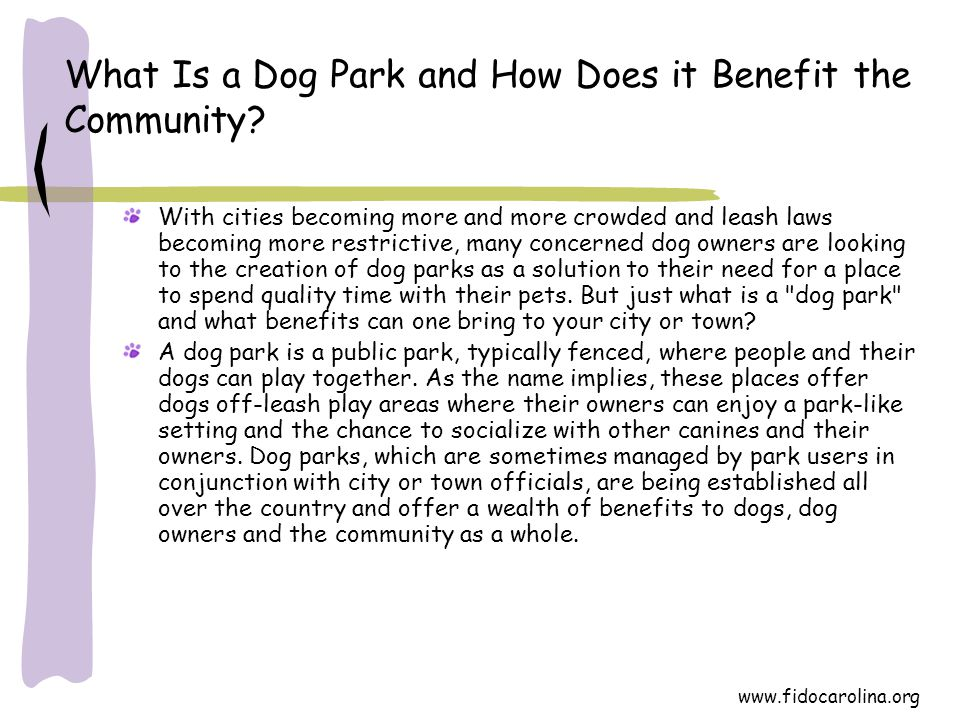 What Is a Dog Park and How Does it Benefit the Community? With cities becoming more and more crowded and leash laws becoming more restrictive, many co