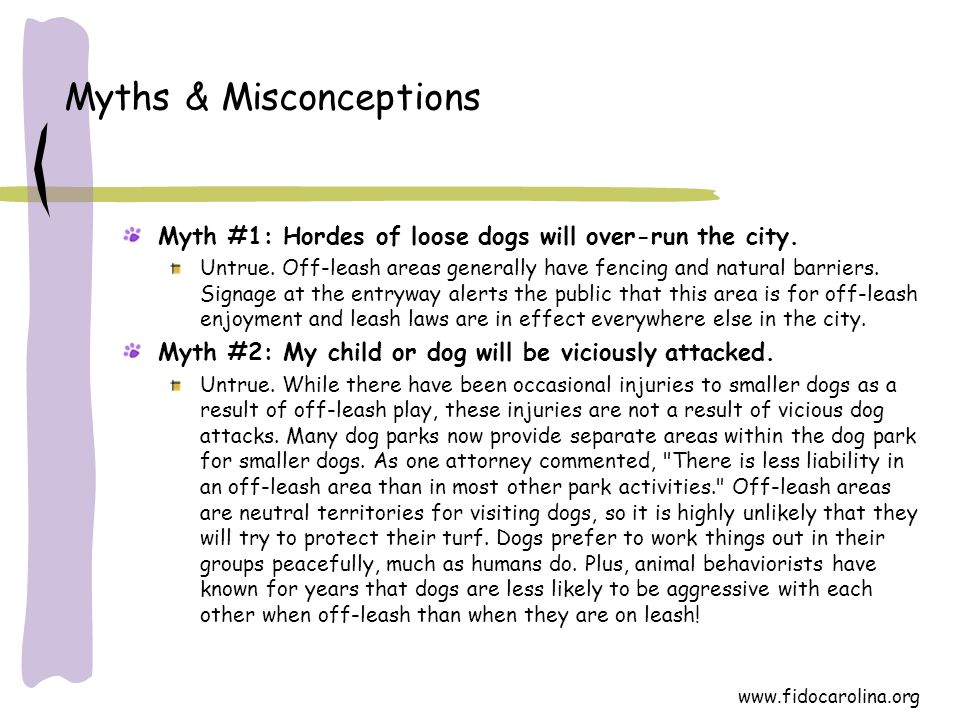 www.fidocarolina.org Myths & Misconceptions Myth #1: Hordes of loose dogs will over-run the city. Untrue. Off-leash areas generally have fencing and n