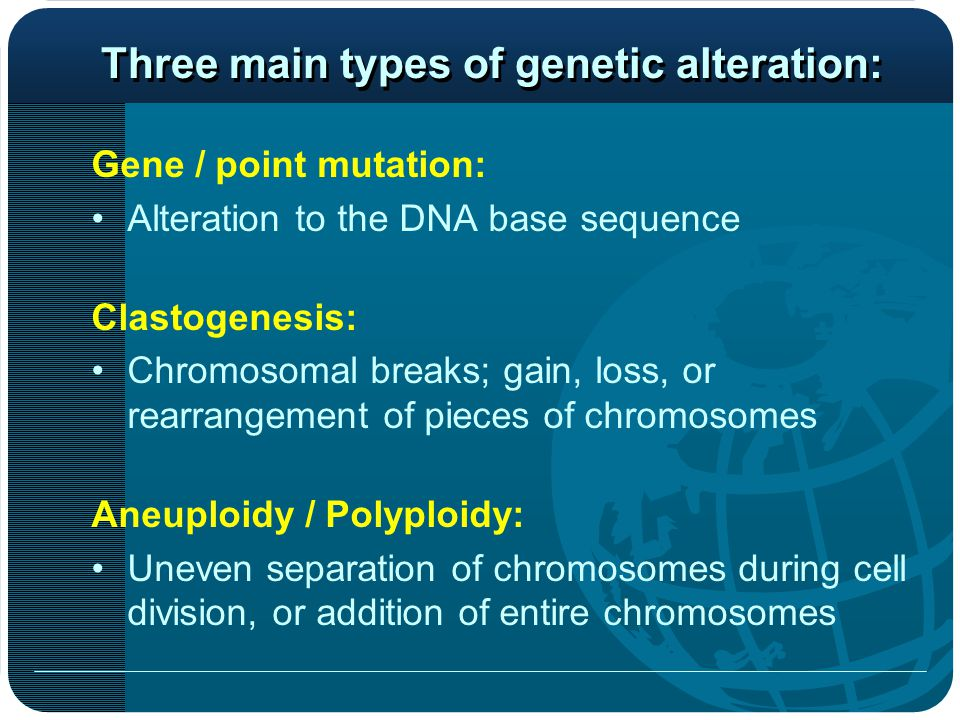 Gene / point mutation: Alteration to the DNA base sequence Clastogenesis: Chromosomal breaks; gain, loss, or rearrangement of pieces of chromosomes Aneuploidy / Polyploidy: Uneven separation of chromosomes during cell division, or addition of entire chromosomes Three main types of genetic alteration: