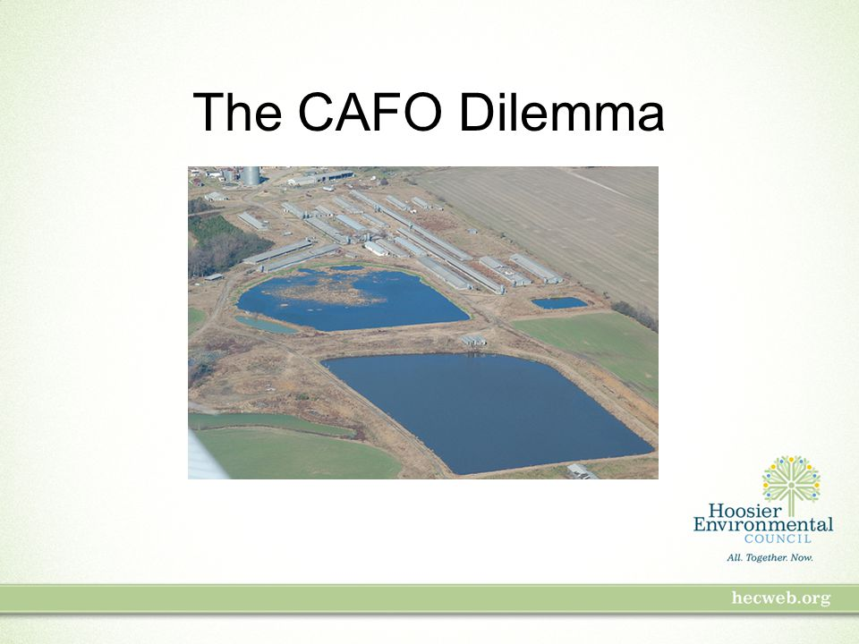 The CAFO Dilemma