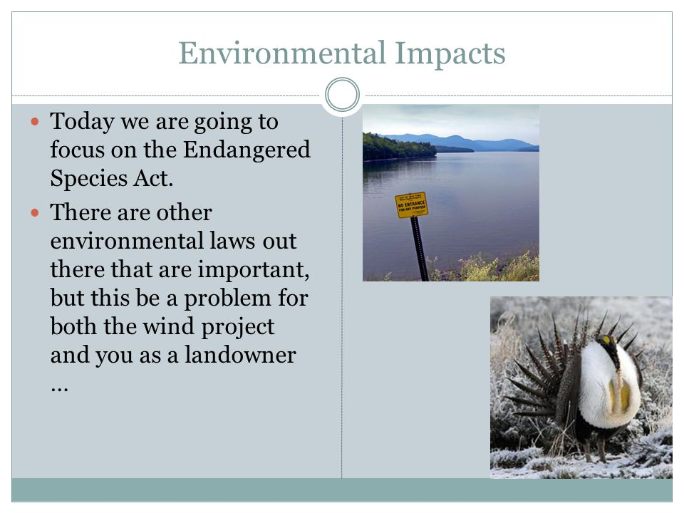 Environmental Impacts Today we are going to focus on the Endangered Species Act. There are other environmental laws out there that are important, but