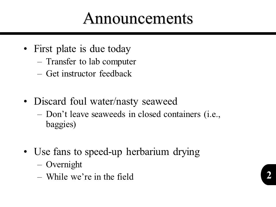 2Announcements First plate is due today –Transfer to lab computer –Get instructor feedback Discard foul water/nasty seaweed –Don't leave seaweeds in c