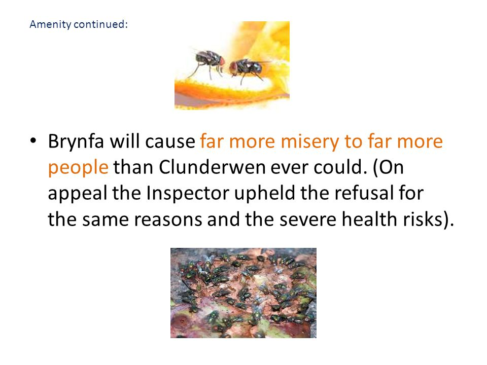 Amenity continued: Brynfa will cause far more misery to far more people than Clunderwen ever could.
