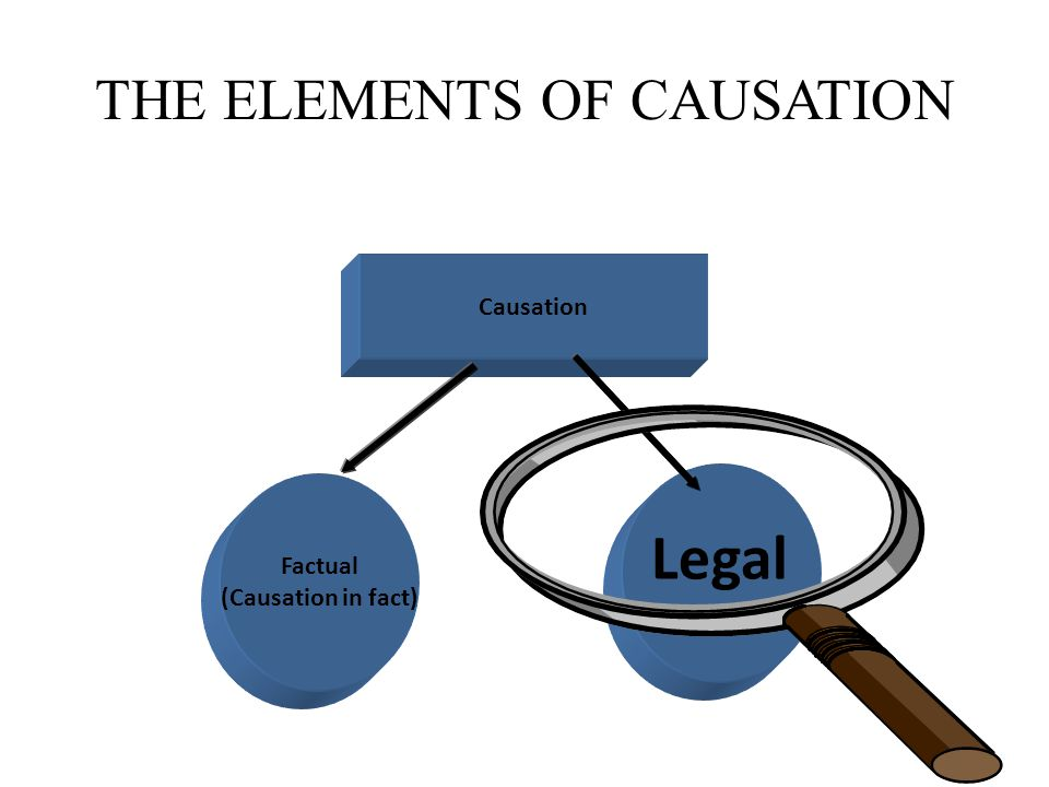THE ELEMENTS OF CAUSATION Causation Factual (Causation in fact) Legal