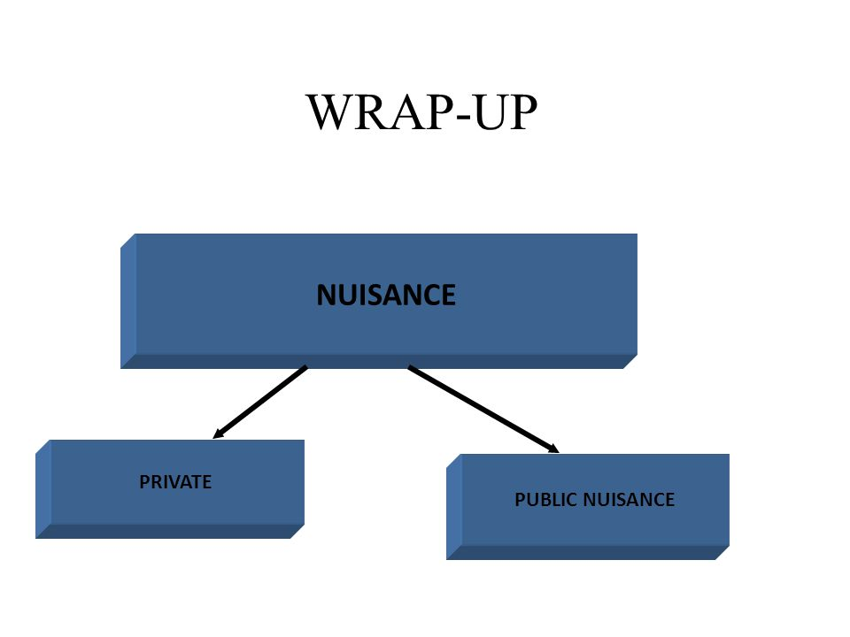 WRAP-UP NUISANCE PRIVATE PUBLIC NUISANCE