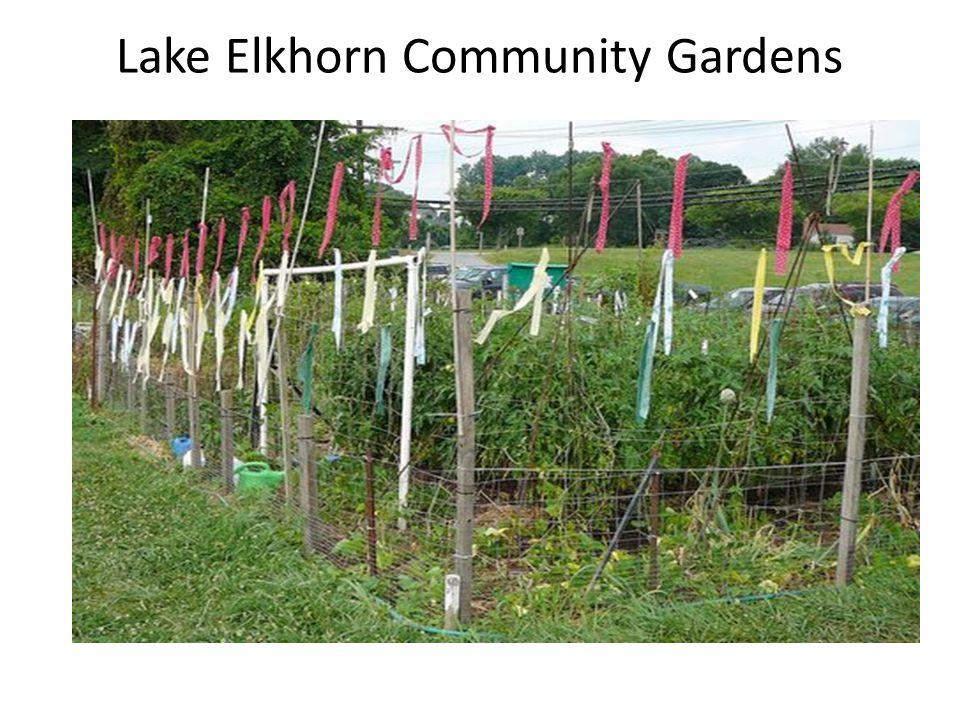 Lake Elkhorn Community Gardens
