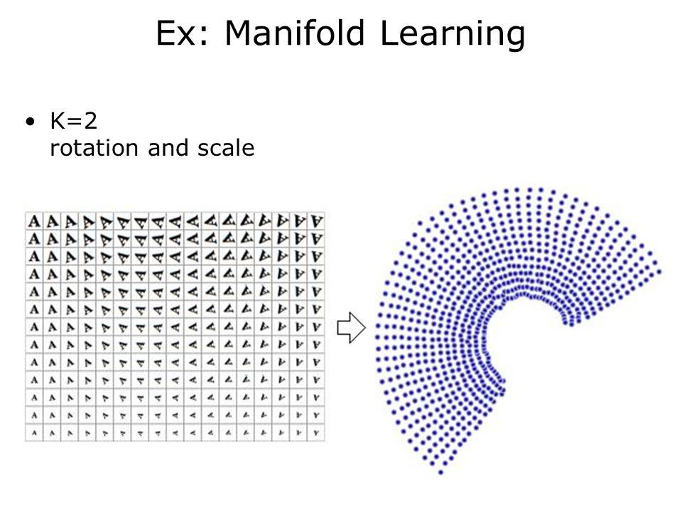 Organization geodesics' 3D rotation Walk-closer zoom-out