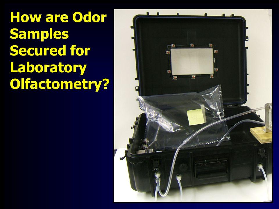 Field Olfactometry D/T (BET 10 )