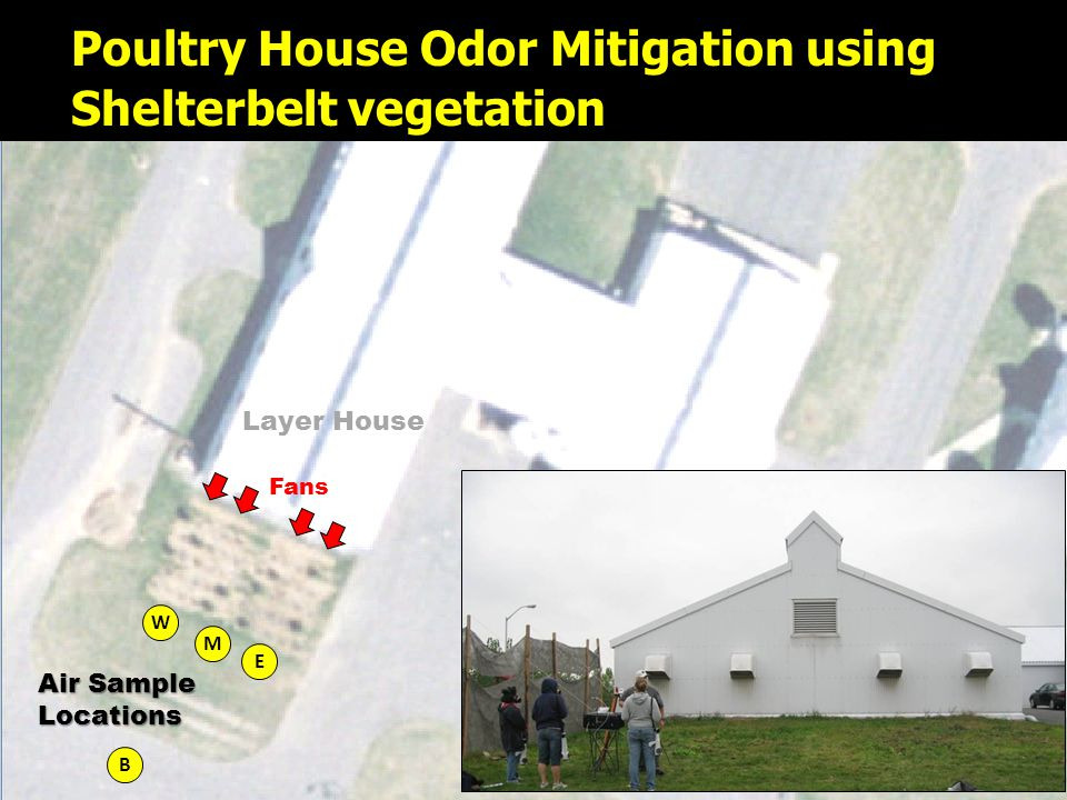 NR PERC Field Maps 7-23-06.ppt27 W Layer House M E B Poultry House Odor Mitigation using Shelterbelt vegetation Fans Air Sample Locations