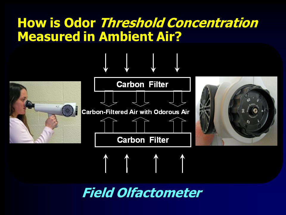 Field Olfactometer How is Odor Threshold Concentration Measured in Ambient Air