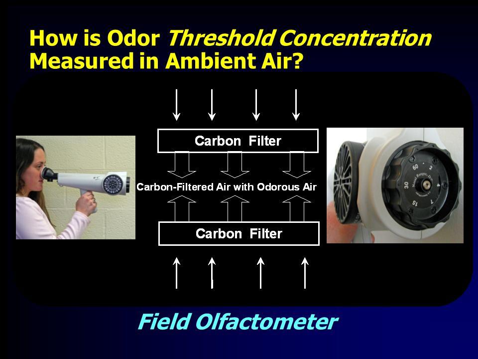 Sensory Comparisons Odor Intensity versus Log BET 10 r=0.99