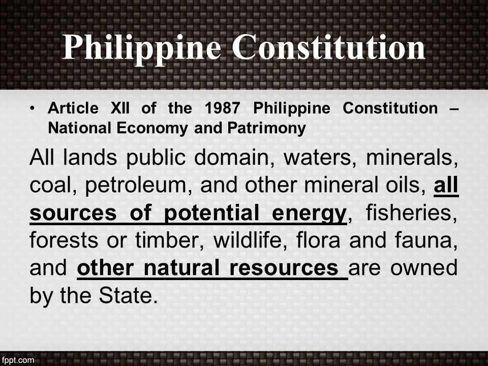 Philippine Constitution Article XII of the 1987 Philippine Constitution – National Economy and Patrimony All lands public domain, waters, minerals, co