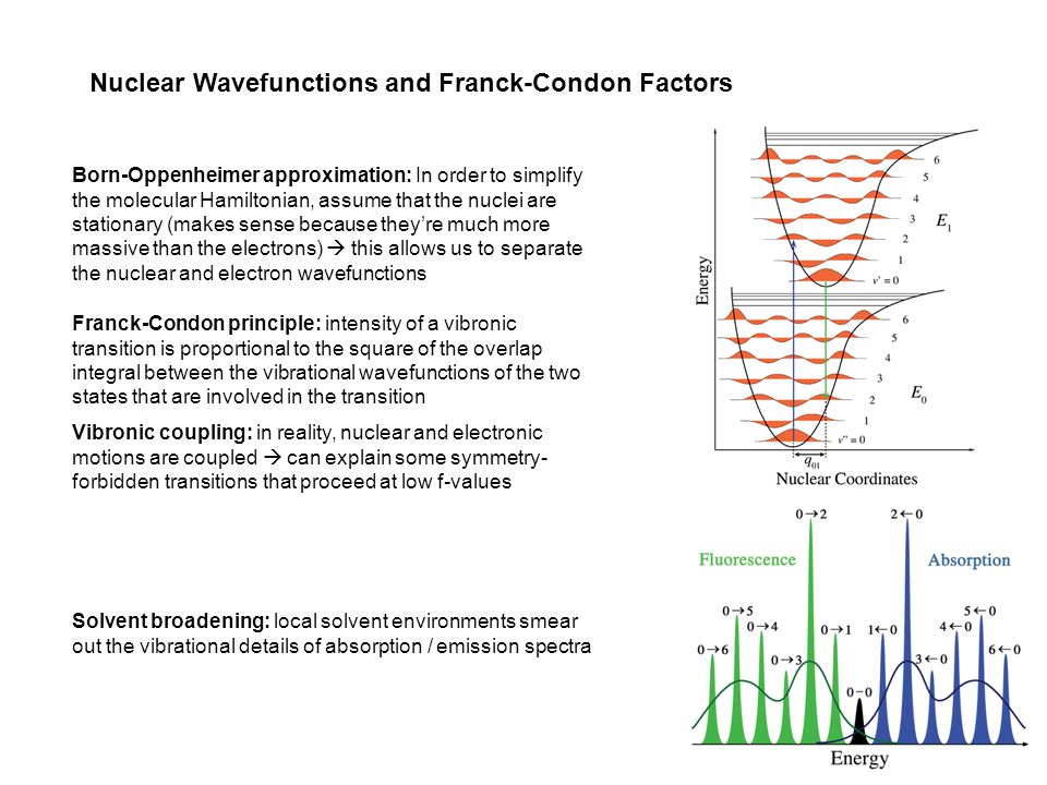 Nuclear Wavefunctions and Franck-Condon Factors Franck-Condon principle: intensity of a vibronic transition is proportional to the square of the overlap integral between the vibrational wavefunctions of the two states that are involved in the transition Born-Oppenheimer approximation: In order to simplify the molecular Hamiltonian, assume that the nuclei are stationary (makes sense because they're much more massive than the electrons)  this allows us to separate the nuclear and electron wavefunctions Vibronic coupling: in reality, nuclear and electronic motions are coupled  can explain some symmetry- forbidden transitions that proceed at low f-values Solvent broadening: local solvent environments smear out the vibrational details of absorption / emission spectra