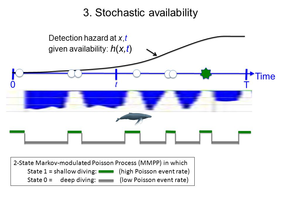 3. Stochastic availability Time t T 0 Detection hazard at x, given availability: h(t  x) Detection hazard at x,t given availability: h(x,t) 2-State Ma