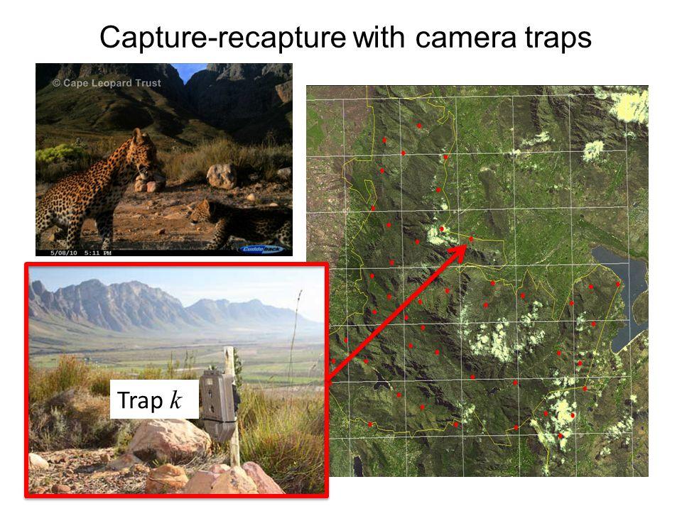 Capture-recapture with camera traps Trap k