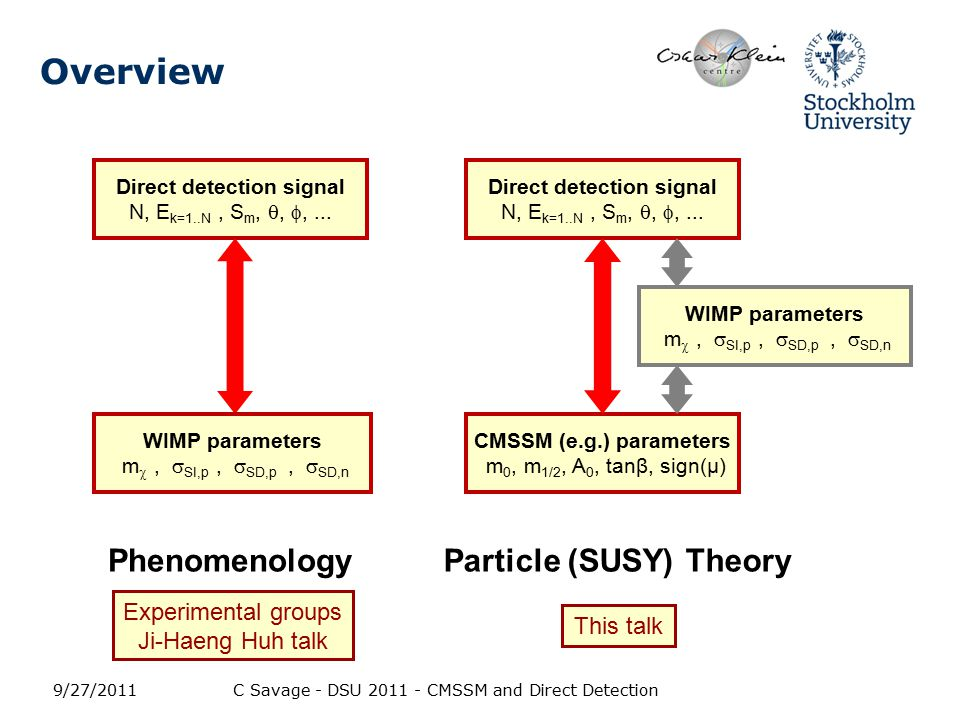 Overview How will future direct detection results constrain dark matter from supersymmetric theories.