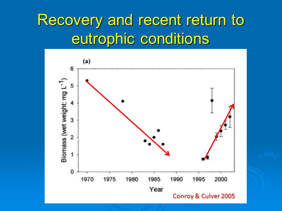 Recovery and recent return to eutrophic conditions Conroy & Culver 2005 Algae