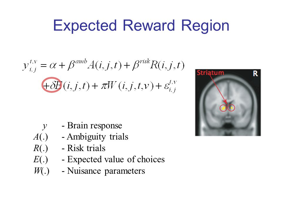 Expected Reward Region y - Brain response A(.) - Ambiguity trials R(.) - Risk trials E(.)- Expected value of choices W(.)- Nuisance parameters