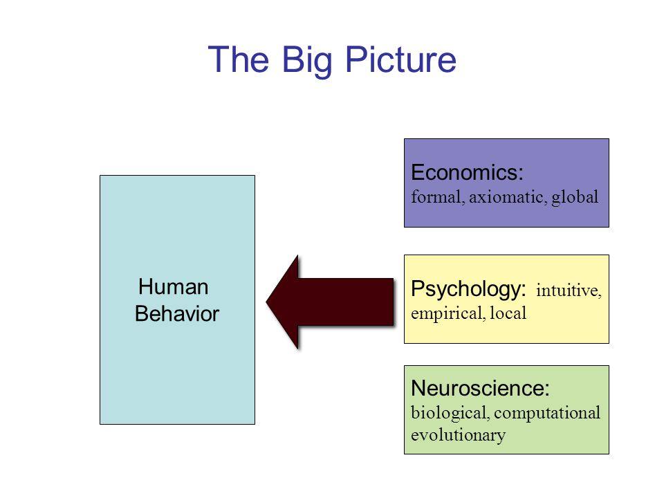 The Big Picture Human Behavior Economics: formal, axiomatic, global Psychology: intuitive, empirical, local Neuroscience: biological, computational evolutionary