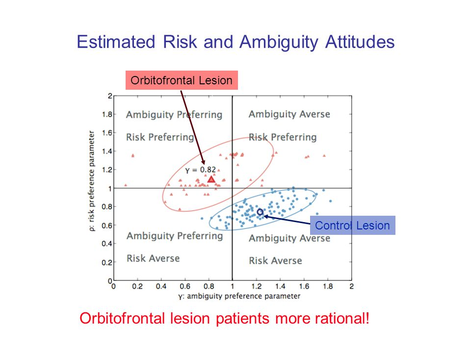 Estimated Risk and Ambiguity Attitudes Orbitofrontal Lesion Control Lesion Orbitofrontal lesion patients more rational!