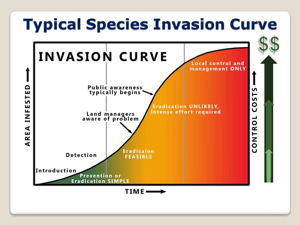 Typical Species Invasion Curve