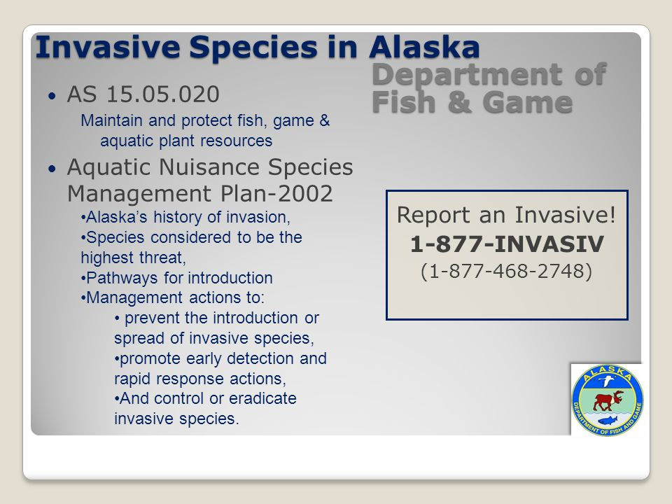 Invasive Species in Alaska Report an Invasive! 1-877-INVASIV (1-877-468-2748) Department of Fish & Game AS 15.05.020 Maintain and protect fish, game &
