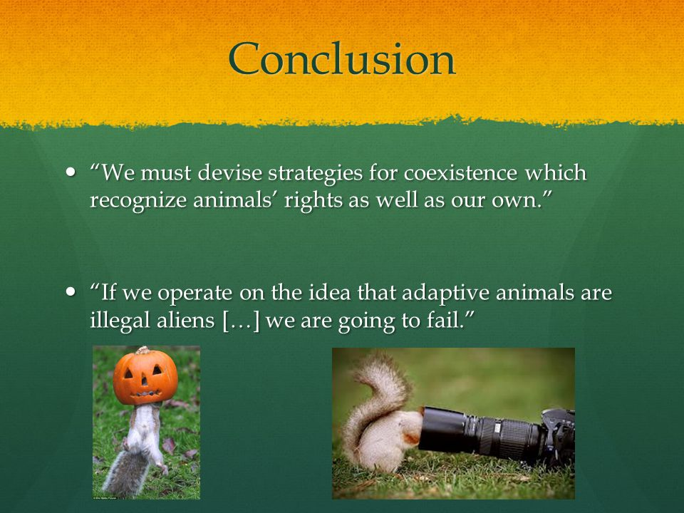 Conclusion We must devise strategies for coexistence which recognize animals' rights as well as our own. We must devise strategies for coexistence which recognize animals' rights as well as our own. If we operate on the idea that adaptive animals are illegal aliens […] we are going to fail. If we operate on the idea that adaptive animals are illegal aliens […] we are going to fail.