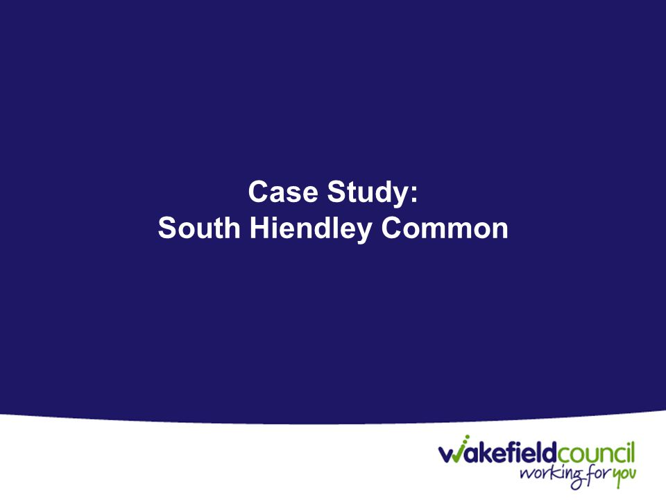 Case Study: South Hiendley Common