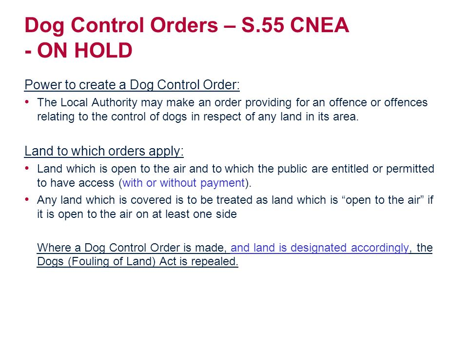 Dog Control Orders – S.55 CNEA - ON HOLD Power to create a Dog Control Order: The Local Authority may make an order providing for an offence or offences relating to the control of dogs in respect of any land in its area.