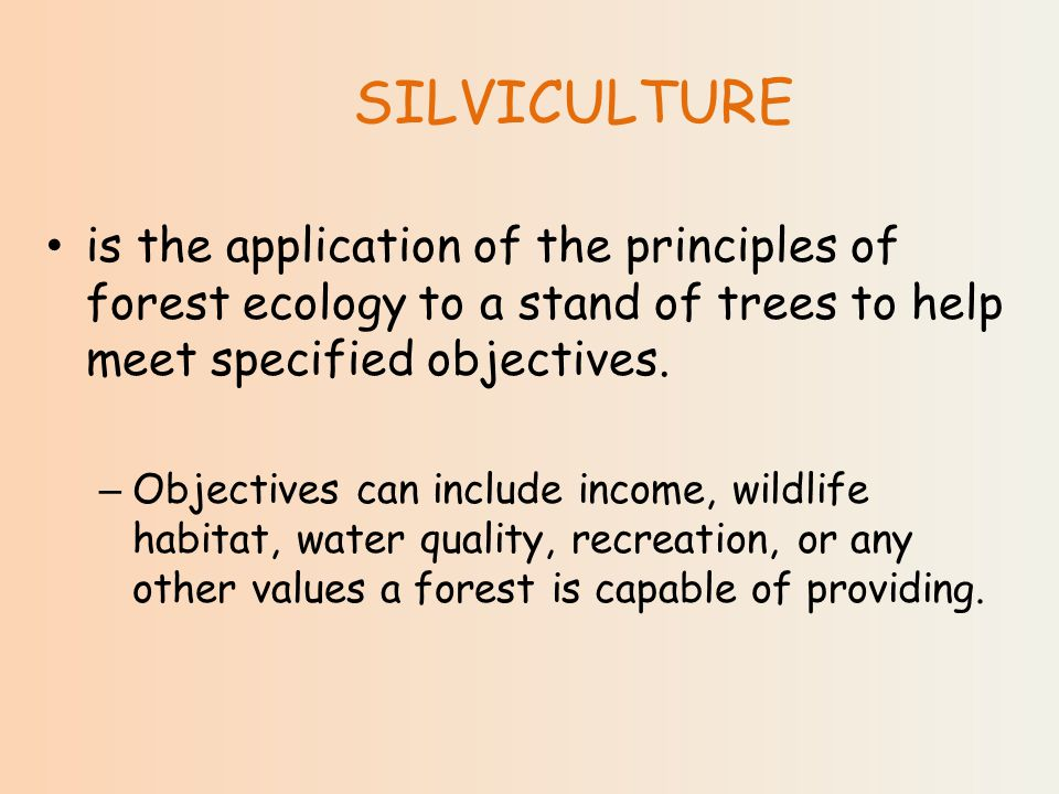 SILVICULTURE is the application of the principles of forest ecology to a stand of trees to help meet specified objectives.