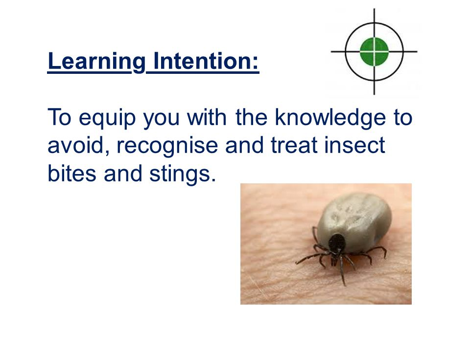 Success Criteria: By the end of this session everyone should be able to: Describe what steps to take to avoid, recognise and treat common insect-related problems in a wilderness environment.