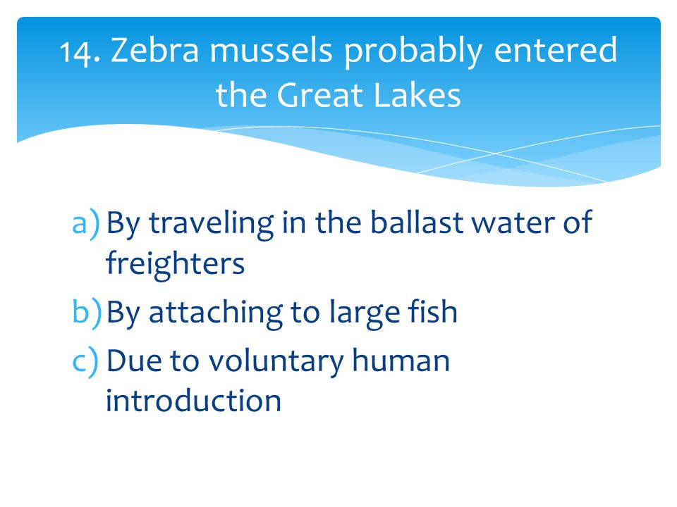 a)By traveling in the ballast water of freighters b)By attaching to large fish c)Due to voluntary human introduction 14.