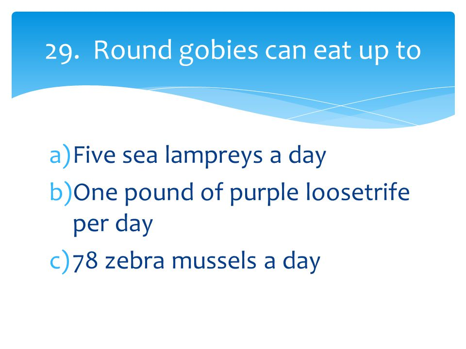 a)Five sea lampreys a day b)One pound of purple loosetrife per day c)78 zebra mussels a day 29.