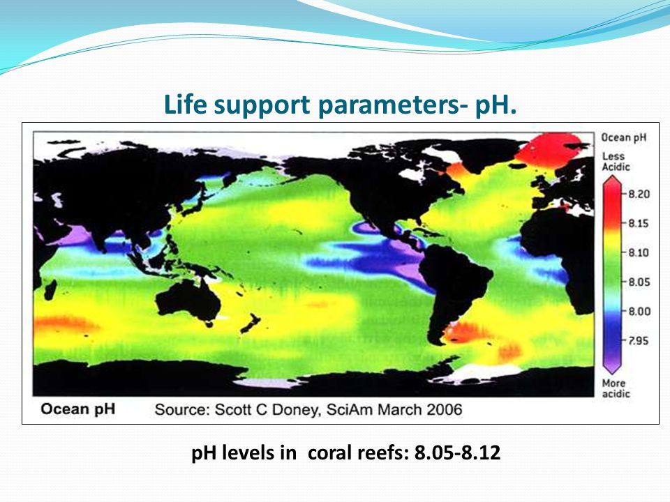 Life support parameters- pH. pH levels in coral reefs: 8.05-8.12