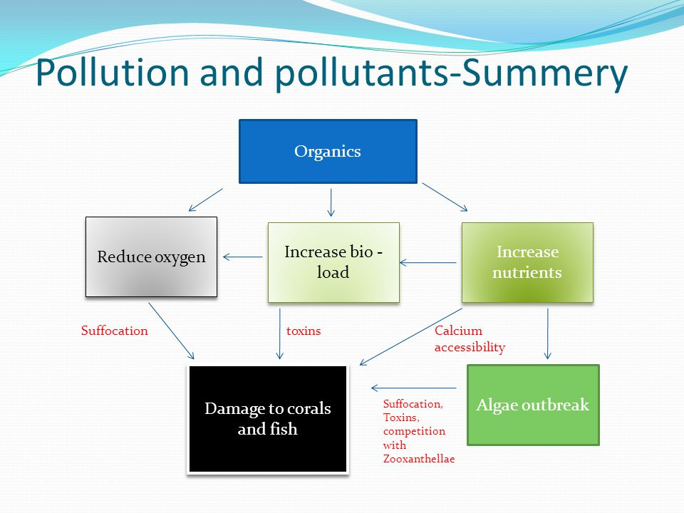 Pollution and pollutants-Summery Organics Increase nutrients Reduce oxygen Increase bio - load Algae outbreak Damage to corals and fish toxinsSuffocat