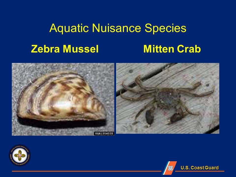 U.S. Coast Guard Aquatic Nuisance Species Zebra Mussel Mitten Crab
