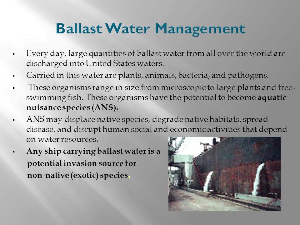  Every day, large quantities of ballast water from all over the world are discharged into United States waters.  Carried in this water are plants, a