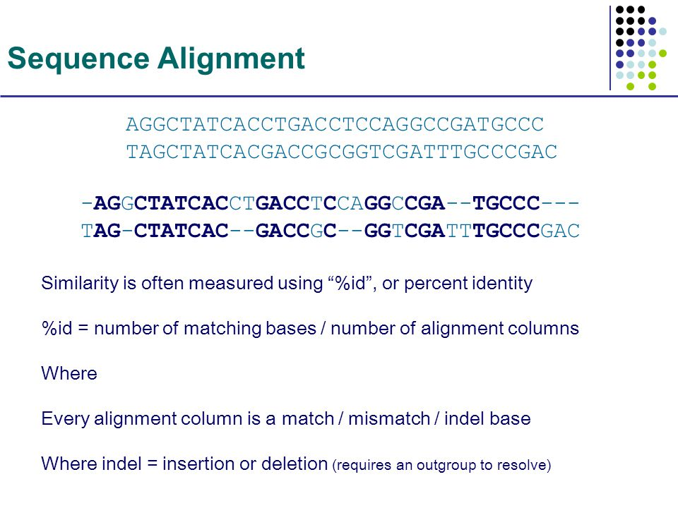 Sequence Alignment -AGGCTATCACCTGACCTCCAGGCCGA--TGCCC--- TAG-CTATCAC--GACCGC--GGTCGATTTGCCCGAC Similarity is often measured using %id , or percent identity %id = number of matching bases / number of alignment columns Where Every alignment column is a match / mismatch / indel base Where indel = insertion or deletion (requires an outgroup to resolve) AGGCTATCACCTGACCTCCAGGCCGATGCCC TAGCTATCACGACCGCGGTCGATTTGCCCGAC