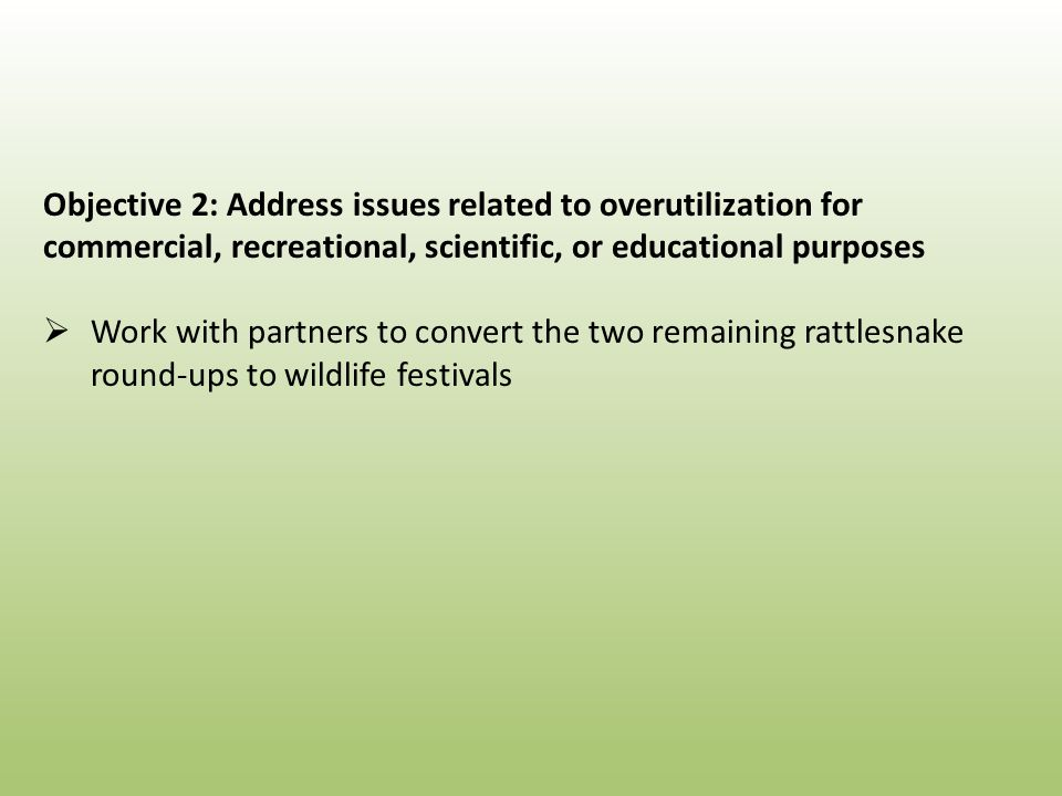 Objective 2: Address issues related to overutilization for commercial, recreational, scientific, or educational purposes  Work with partners to convert the two remaining rattlesnake round-ups to wildlife festivals