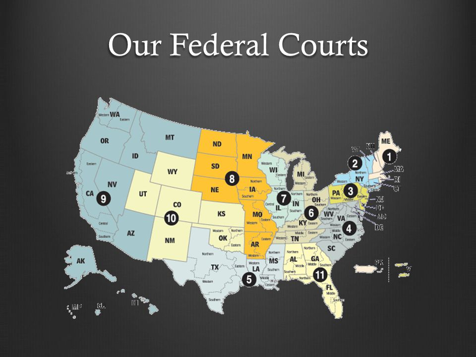 Our Federal Courts