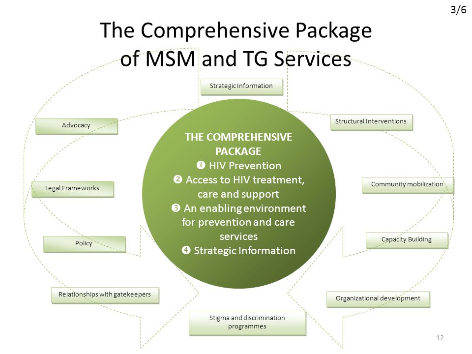 The Comprehensive Package of MSM and TG Services 12 Strategic Information Advocacy Legal Frameworks Policy Relationships with gatekeepers Stigma and d