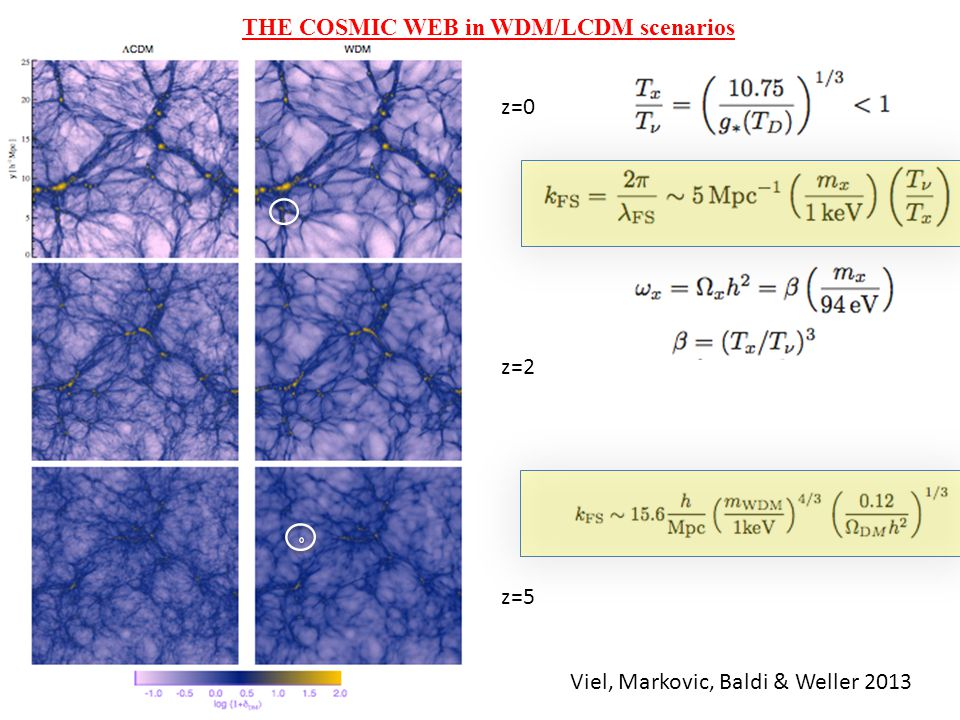 THE COSMIC WEB in WDM/LCDM scenarios z=0 z=2 z=5 Viel, Markovic, Baldi & Weller 2013