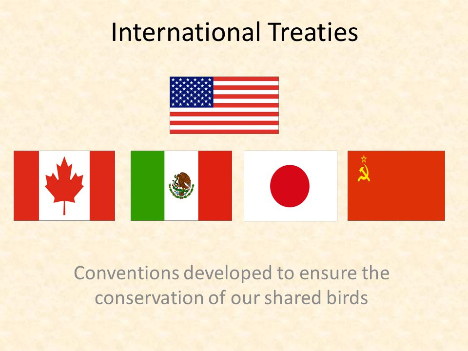 International Treaties Conventions developed to ensure the conservation of our shared birds