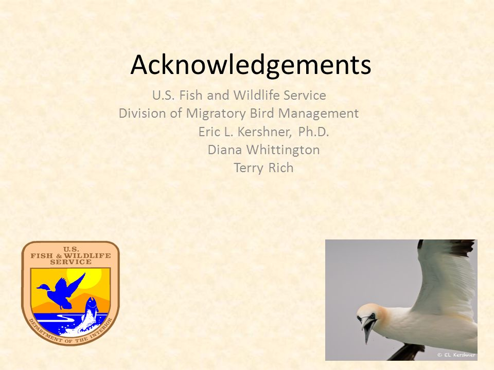 Acknowledgements U.S. Fish and Wildlife Service Division of Migratory Bird Management Eric L.