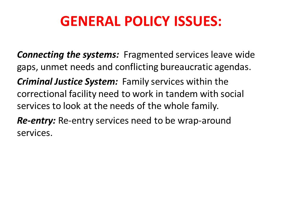 GENERAL POLICY ISSUES: Connecting the systems: Fragmented services leave wide gaps, unmet needs and conflicting bureaucratic agendas.