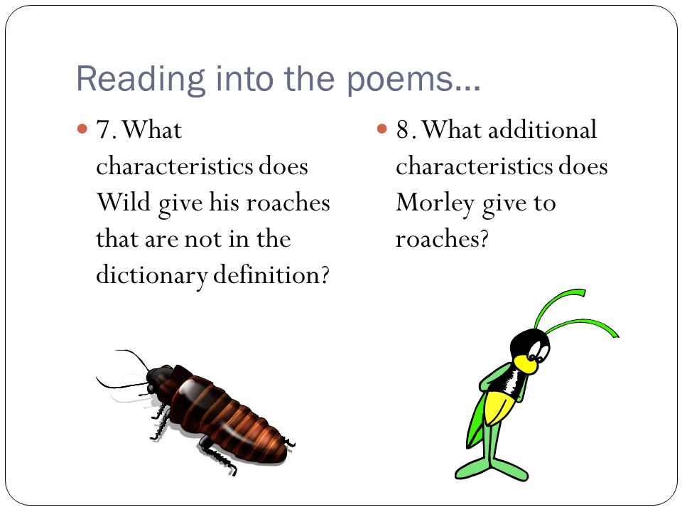 Reading into the poems… 7. What characteristics does Wild give his roaches that are not in the dictionary definition? 8. What additional characteristi